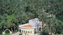 Palm tree grove. Elche © Turespaña