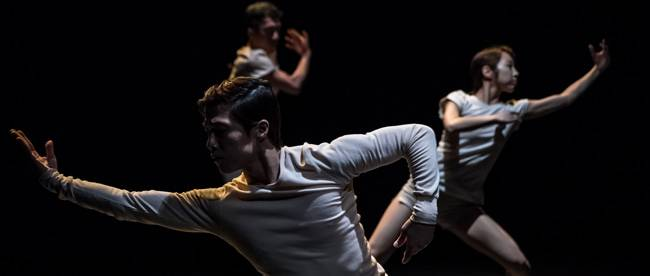 Masdanza, the Canaries International Contemporary Dance Festival