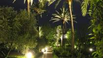 View of the Botanical Garden in Cordoba by night © Consorcio de Turismo de Córdoba