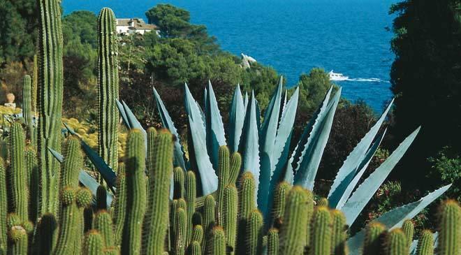 Santa clotilde gardens in lloret de mar girona at spain for Jardin cactus madrid