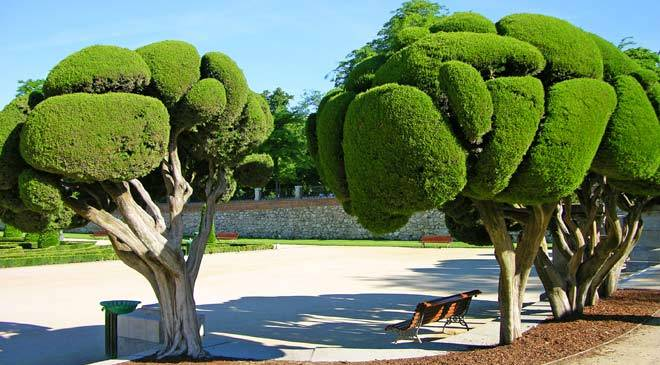 Buen retiro park gardens in madrid at spain is culture for Parques de madrid espana