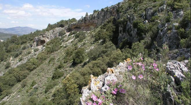 La sarga cave ii monuments in alcoy alicante alacant for Oficina de turismo alicante