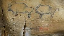 Representation of bison in the Covaciella cave © Fundación ITMA/S.Relanzon