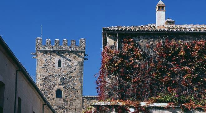 Front view of one of the palace towers. Golfines de Arriba palace. Cáceres © Turespaña