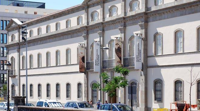 Museum Natural Science Madrid